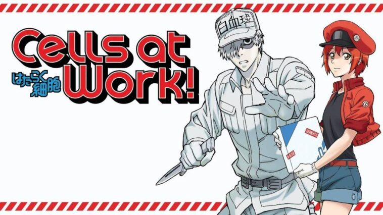 Cells at Work ! 2. Sezon